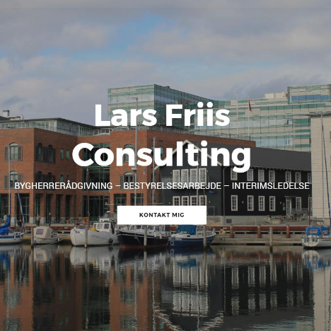 lars friis consulting